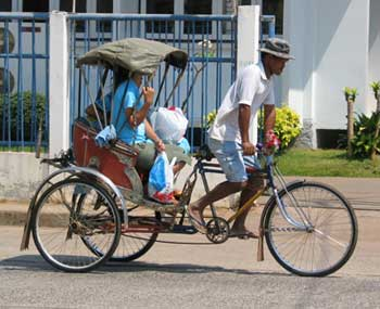 rickshawtaxi